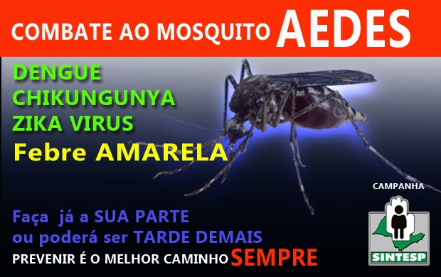 Vamos combater o aedes!